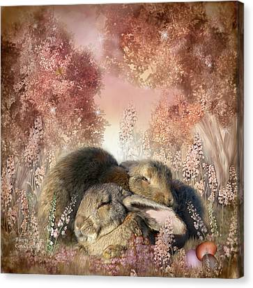 Bunny Dreams Canvas Print by Carol Cavalaris