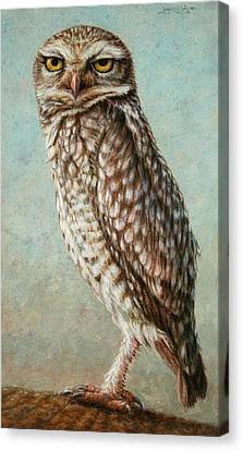 Burrowing Owl Canvas Print by James W Johnson