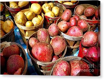 Bushels Of Potatoes At A Farm Market Canvas Print by Olivier Le Queinec