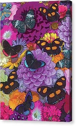Butterflies And Flowers 2 Canvas Print by JQ Licensing