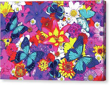 Butterflies And Flowers Canvas Print by JQ Licensing