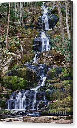 Buttermilk Falls Canvas Print by Paul Ward