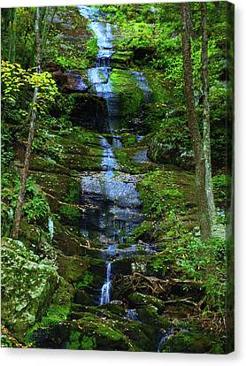 Buttermilk Falls Canvas Print by Raymond Salani III
