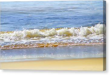 By The Coral Sea Canvas Print by Holly Kempe