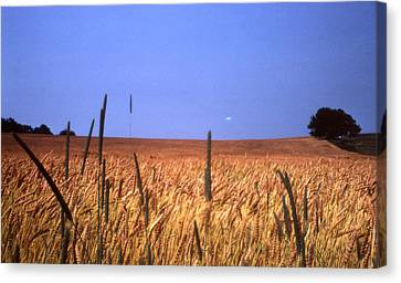 By The Highway 2 Canvas Print by Lyle Crump