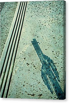 Cactus Shadow Abstract Canvas Print by Tony Grider