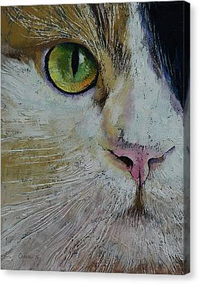 Calico Cat Canvas Print by Michael Creese