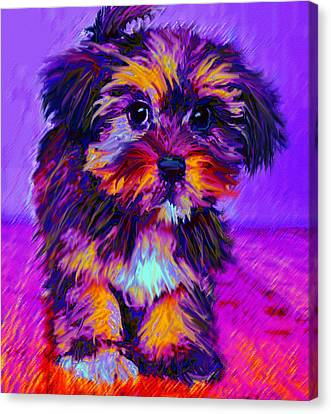 Calico Dog Canvas Print by Jane Schnetlage