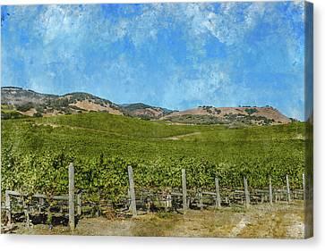 California - Napa Valley Vineyard Canvas Print by Brandon Bourdages