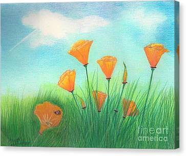 California Poppies Canvas Print by Janet Hinshaw