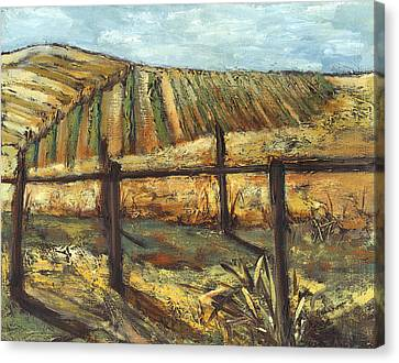 California Vineyard Canvas Print by Susan Adame