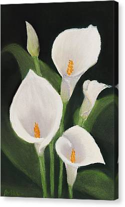 Calla Lilies Canvas Print by Anastasiya Malakhova