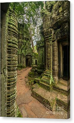 Cambodia Ta Phrom Ruins Canvas Print by Mike Reid
