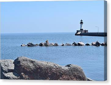 Canal Park Lighthouse Canvas Print by Charles F Miller