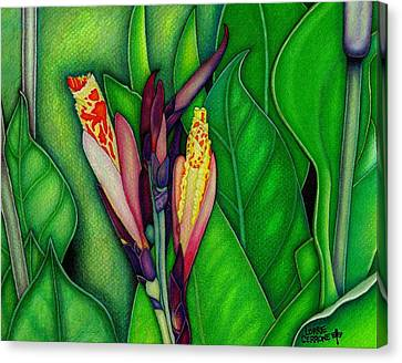 Canna Lilies Canvas Print by Lorrie Cerrone