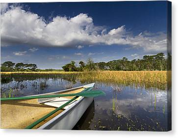 Canoeing In The Everglades Canvas Print by Debra and Dave Vanderlaan