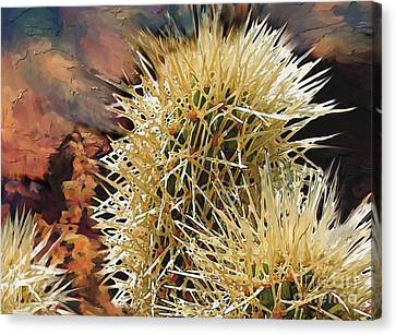Canyon Cactus Canvas Print by Bob Salo