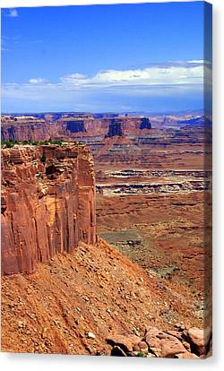 Canyonlands 4 Canvas Print by Marty Koch