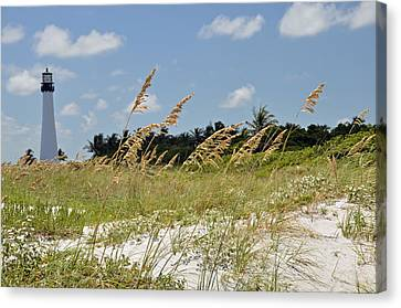 Cape Florida Canvas Print by Kelly Wade