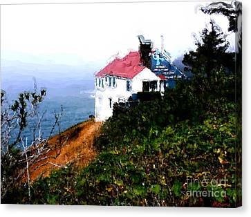 Cape Foulweather Canvas Print by Methune Hively