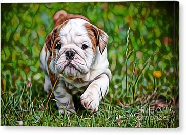 Captain Crunch Canvas Print by Marvin Blaine
