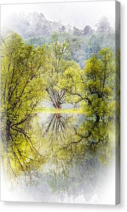 Caress In The Mist Canvas Print by Debra and Dave Vanderlaan