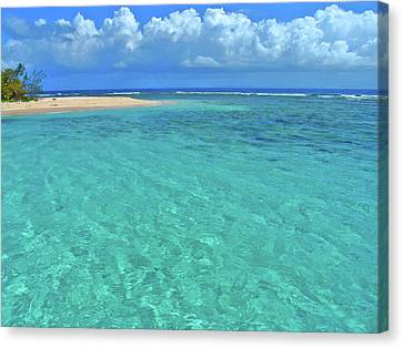 Caribbean Water Canvas Print by Scott Mahon