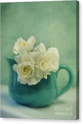 Carnations In A Jar Canvas Print by Priska Wettstein