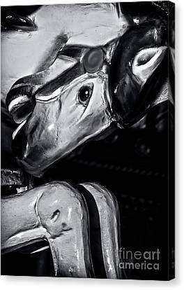 Carousel Of Despair 1 Canvas Print by James Aiken
