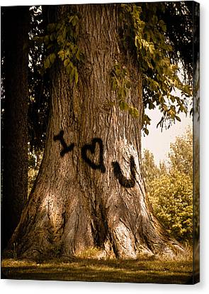 Carve I Love You In That Big White Oak Canvas Print by Trish Tritz