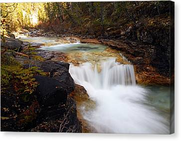 Cascade On Beauty Creek Canvas Print by Larry Ricker
