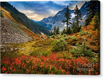 Cascade Pass Fall Canvas Print by Inge Johnsson