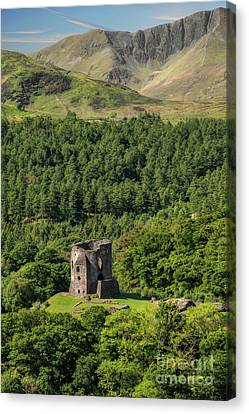 Castle Dolbadarn  Canvas Print by Adrian Evans