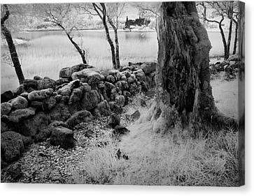 Castle Kilchurn Canvas Print by Billy Currie Photography