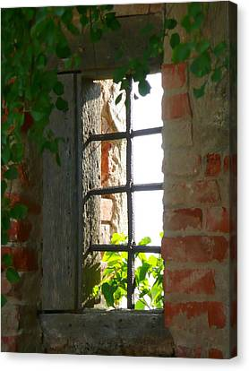 Castle Window Canvas Print by Lori Seaman