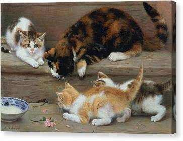 Cat And Kittens Chasing A Mouse   Canvas Print by Rosa Jameson