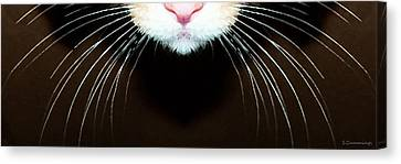 Cat Art - Super Whiskers Canvas Print by Sharon Cummings