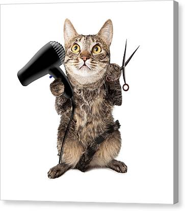 Cat Groomer With Dryer And Scissors Canvas Print by Susan  Schmitz