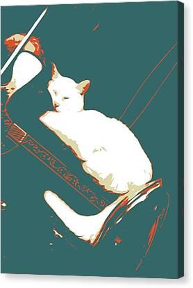 Cat Nap Canvas Print by Eddie G
