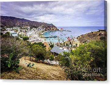 Catalina Island Avalon California From Above Canvas Print by Paul Velgos