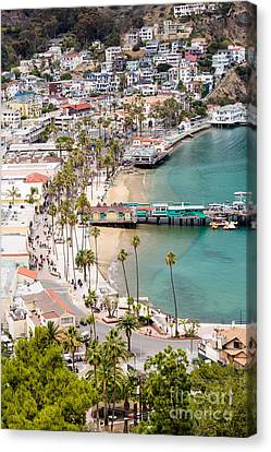Catalina Island Avalon Waterfront Aerial Photo Canvas Print by Paul Velgos