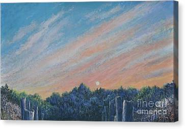 Catching The Sunset Canvas Print by Penny Neimiller