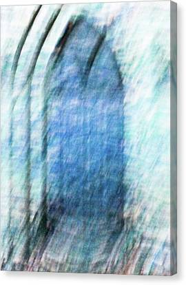 Cathedral Door Abstract Canvas Print by Tony Grider
