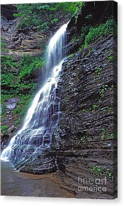 Cathedral Falls In Spring Canvas Print by Thomas R Fletcher
