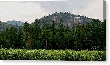 Cathedral Ledge North Conway Nh Canvas Print by Paul Gaj