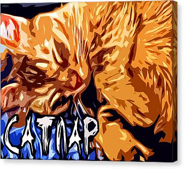 Catnap Canvas Print by David G Paul
