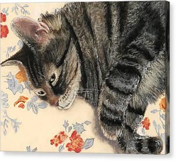Cattitude Canvas Print by Anastasiya Malakhova