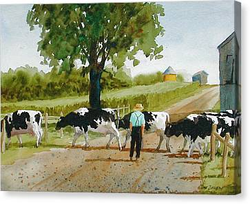 Cattle Crossing Canvas Print by Faye Ziegler