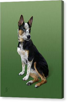Cattle Dog Canvas Print by Michelle Spalding