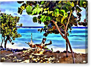 Cayman Cove Canvas Print by Carey Chen